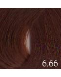 6.66 Rojo Vivo