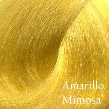 GLC9 Amarillo Mimosa
